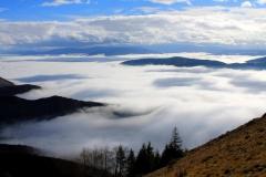 Magla svuda, magla oko nas -autor:NENAD BRATIC